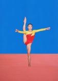 Actitudes de la gimnasia Foto de archivo