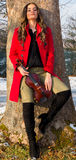 Actitudes de la muchacha con el violín Fotos de archivo libres de regalías