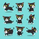 Actitudes del gato del personaje de dibujos animados Imagen de archivo