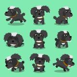 Actitudes negras del perro maltés del personaje de dibujos animados Foto de archivo libre de regalías