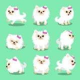 Actitudes pomeranian blancas del perro del personaje de dibujos animados Fotos de archivo libres de regalías