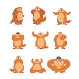 Actitudes y movimiento del sistema de Groundhog Marmota feliz y yoga marmot Foto de archivo libre de regalías