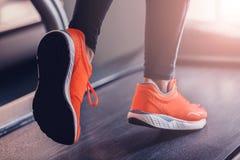 Activando en un pasillo del trípode los zapatos de los deportes de una rueda de ardilla imagen de archivo