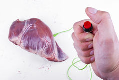 Activate your heart. Hand holding a button connected to a heart organ (pig) with a cable. Concept stock images
