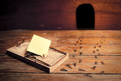 Activated mousetrap with empty message Royalty Free Stock Photos