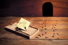 Activated mousetrap with funny message from rat royalty free stock images