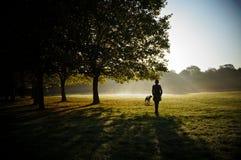 Active игры женщины с черной собакой в парке лета Стоковые Фотографии RF