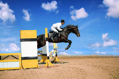 Active. Horse theme: jockeys, horse races, speed Royalty Free Stock Photo