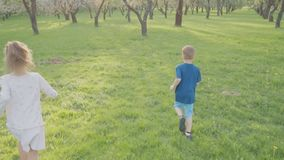 Active boy and girl run near the trees in the park. Beautiful nature. Slow motion.  stock video