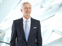 Active businessman portrait Stock Photography