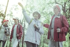 Active and cheerful elderly people hiking in the forest. Happy pension. Active and cheerful elderly people hiking in the forest stock images