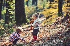 Active children play games on fresh air in autumn forest. Active rest and kids activity outdoor.  royalty free stock photography