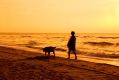 Active conceptual image. Walking with the dog on the beach Royalty Free Stock Image
