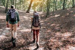 Cheerful man and woman walking in the woods stock photos