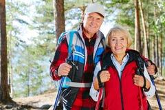Active couple. Active seniors hiking with trekking sticks stock photos