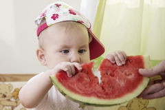Active cute baby emotionally in the plot with a watermelon. Stock Images