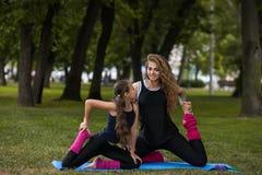 Active, der draußen ausdehnt Teamwork-Gymnastik Stockbild