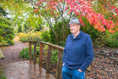 Active Elderly Man in Autumn Rain in Park. Active healthy senior male casually standing on small wooden bridge in park with fall foliage on rainy day royalty free stock images