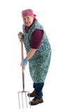Active elderly woman holding pitchfork 2. A lusty female senior with pitchfork looks to viewer 2 royalty free stock photo