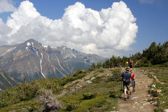 Active family hiking with poles on cavell meadows  Stock Photo