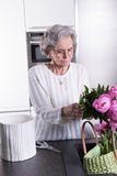 Active female pensioner is preparing flowers for the vase Stock Image