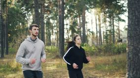 Active friends in sportswear are jogging in park on sunny day enjoying healthy activity and autumn nature. Evergreen. Active friends girl and guy in sportswear stock video footage