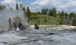 Active geyser. Yellowstone National Park. The park contains the largest active geyser in the world Royalty Free Stock Images