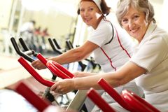 Active grandmas. Portrait of two good-looking senior women training on exercise machines Stock Image