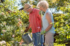 Active happy senior woman standing next to her husband during garden work. Active happy senior women looking at camera while standing next to her husband during royalty free stock images