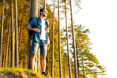 Active healthy man hiking in beautiful forest. Hiking, Forest, Journey stock photos