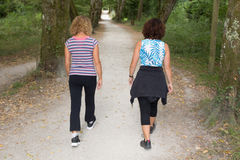 Active healthy women doing walking in summer on a park royalty free stock images