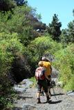 Active holidays in the Canary Island of La Palma Stock Photo