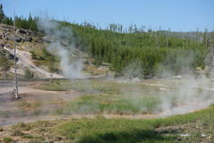 An active hot spring at yellowstone. Royalty Free Stock Image