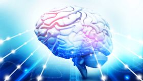 Active human brain. 3d illustration stock illustration