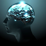 Active Human Brain Royalty Free Stock Image