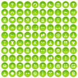 100 active life icons set green circle Royalty Free Stock Photography