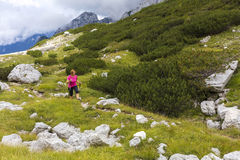 Active lifestyle - healthy lifestyle. Feeling good when walking. In nature. Outdoor activities hiking in the mountains. Daily walk in nature royalty free stock photo