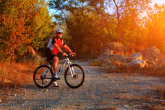 Active man on bike with nature background Stock Images