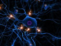 Active nerve cell Stock Photos