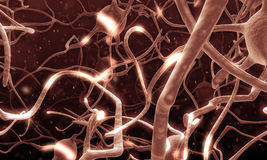 Active nerve cell in human neural system Royalty Free Stock Images