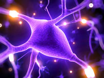 Active nerve cells. 3d rendered illustration - nerve cell Royalty Free Stock Photography