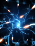 Active nerve cells. 3d rendered illustration - nerve cell Royalty Free Stock Photo