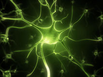 Active nerve cells Royalty Free Stock Image