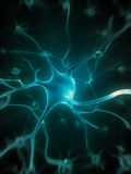 Active nerve cells Royalty Free Stock Images