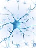 Active nerve cells royalty free illustration