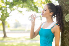 Active peaceful brunette drinking from a water bottle Stock Images