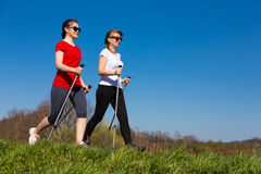Active people nordic walking. Outdoor royalty free stock images