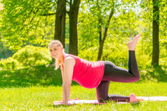 Active pregnant girl is engaged in gymnastics in the park Royalty Free Stock Photography