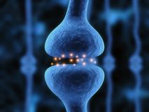 Active Receptor Royalty Free Stock Image