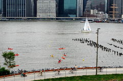 Active Recreation on the East River, New York City Royalty Free Stock Photo